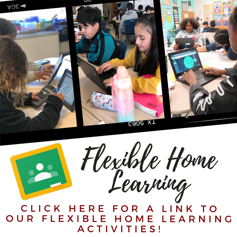 Flexible Home Learning Activities