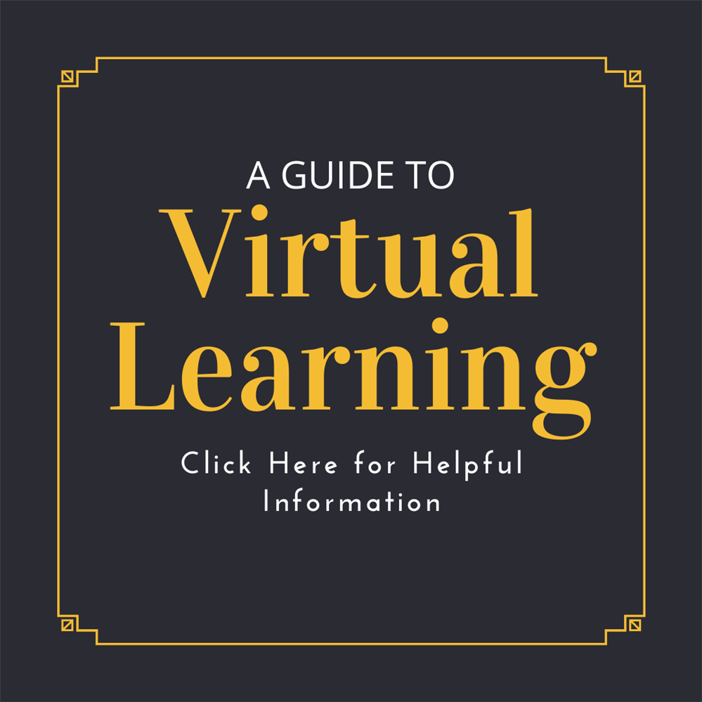 Virtual Learning Schedule & Guide